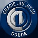 gracie-jiu-jitsu-gouda_bjj-braziliaans-jiu-jitsu-zelfverdediging_selfdefense_130