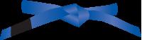 Blauwe-band_gracie-jiu-jitsu-gouda_bjj-braziliaans-jiu-jitsu-zelfverdediging_selfdefense_mobile-200