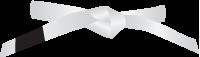 Witte-band_gracie-jiu-jitsu-gouda_bjj-braziliaans-jiu-jitsu-zelfverdediging_selfdefense_mobile-200