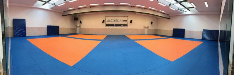 egjjf-autumn-camp-2018_seminars_gracie-jiu-jitsu-gouda_bjj-braziliaans-jiu-jitsu-zelfverdediging_selfdefense-12