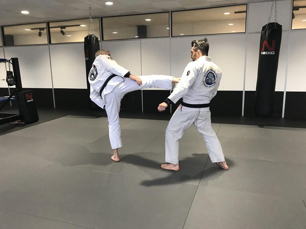 harold-harder_lerarentraining_egjjf_gracie-jiu-jitsu-gouda_bjj-braziliaans-jiu-jitsu-zelfverdediging_selfdefense-3
